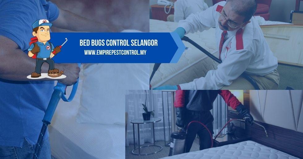 Bed Bugs Control Selangor