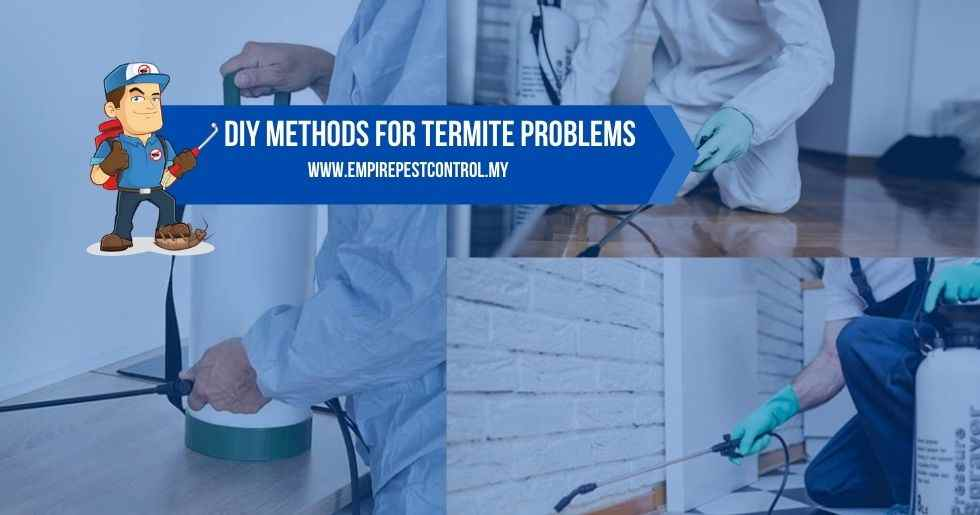 DIY Methods For Termite Problems
