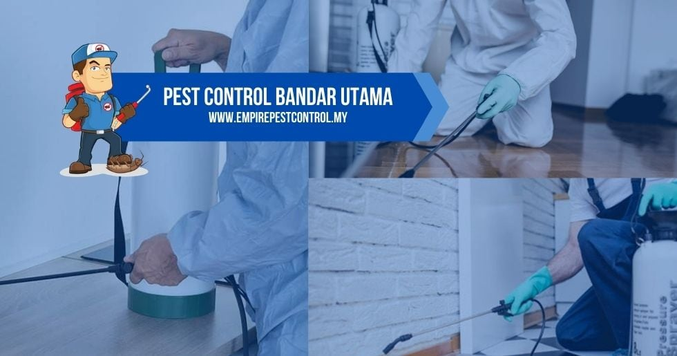 Pest Control Bandar Utama