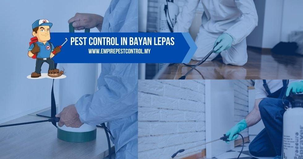 Pest Control Bayan Lepas