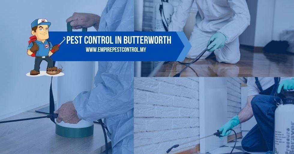 Pest Control Butterworth