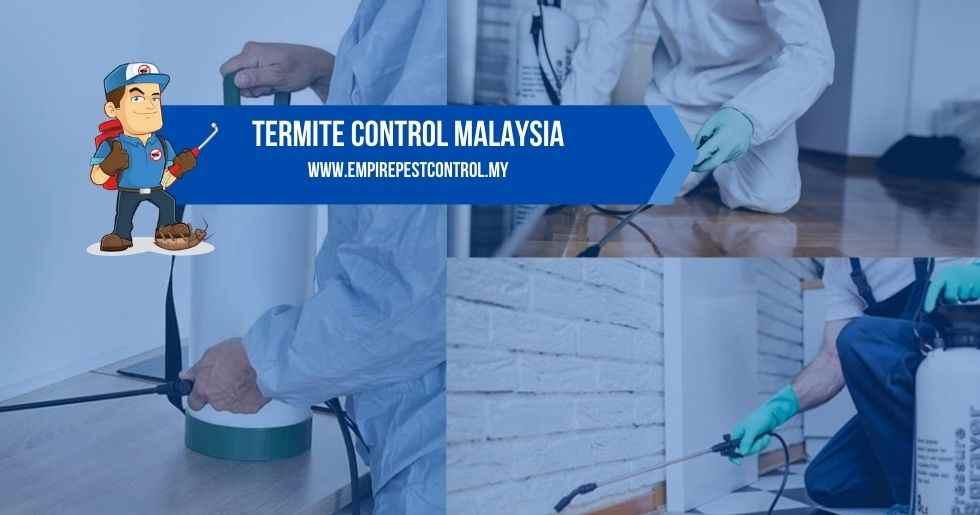 Termite Control Malaysia