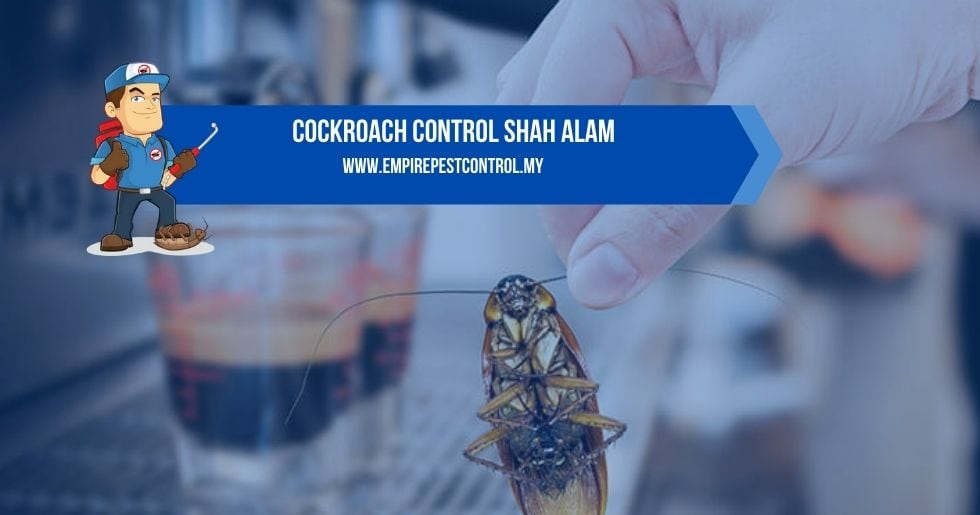 Cockroach Control Shah Alam