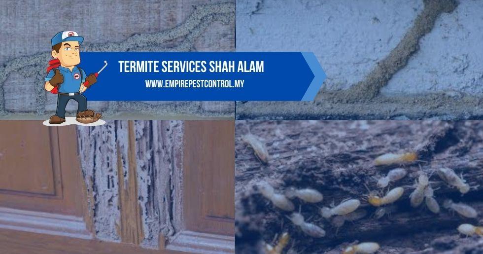 Termite Services Shah Alam