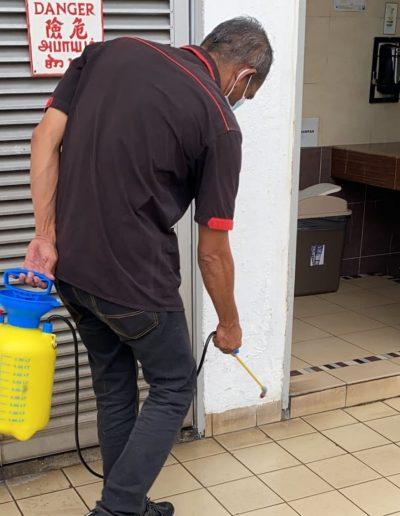 pest control task