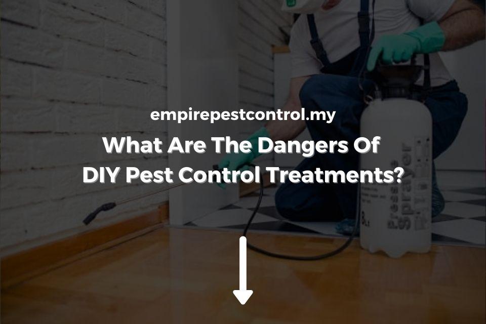 Dangers Of DIY Pest Control Treatments