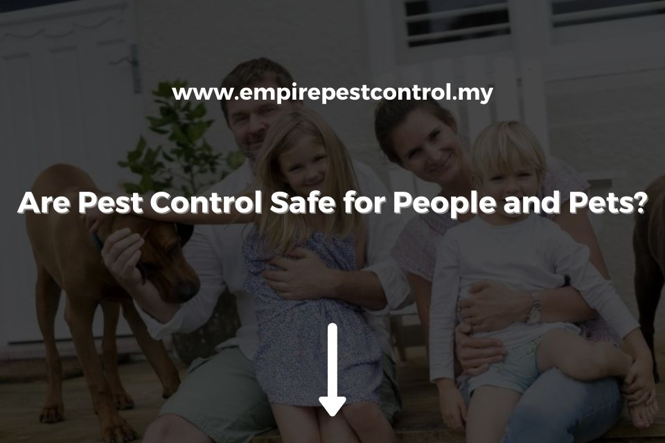 Are Pest Control Safe for People and Pets