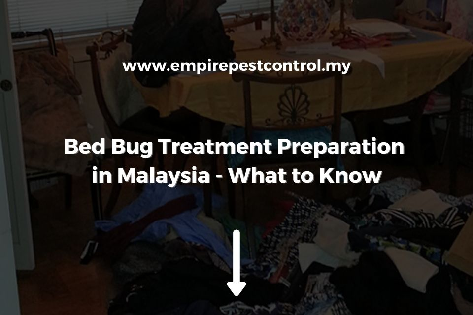 Bed Bug Treatment Preparation in Malaysia