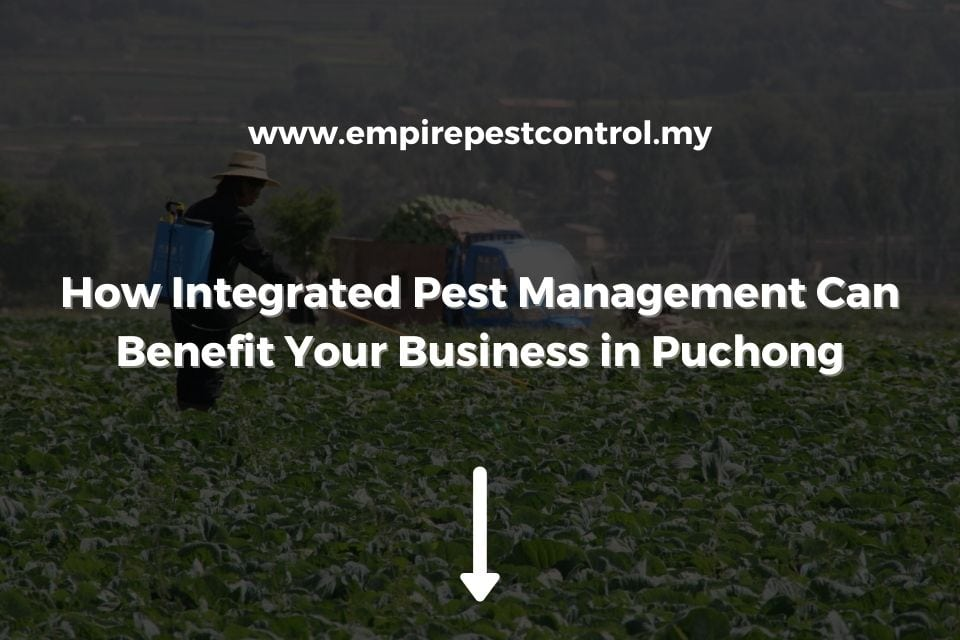 How Integrated Pest Management Can Benefit Your Business in Puchong