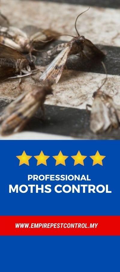 Moths Control Malaysia