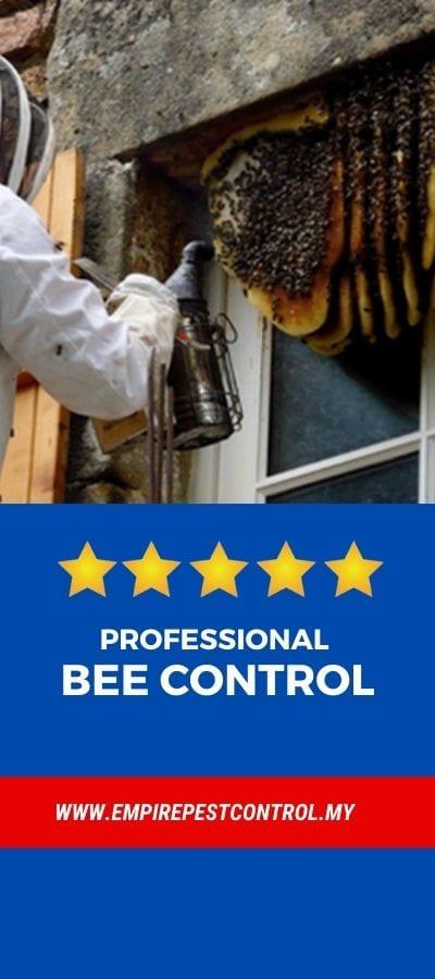 Professional Bee Control Malaysia