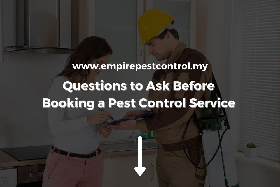Questions to Ask Before Booking a Pest Control Service