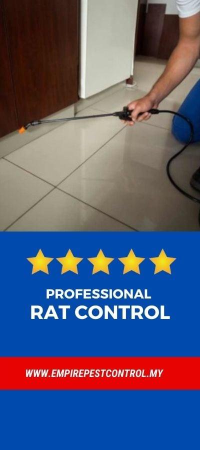 Rat Control Malaysia