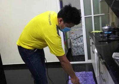 pest control specialist working