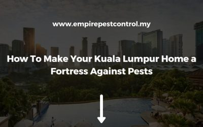 How To Make Your Kuala Lumpur Home a Fortress Against Pests
