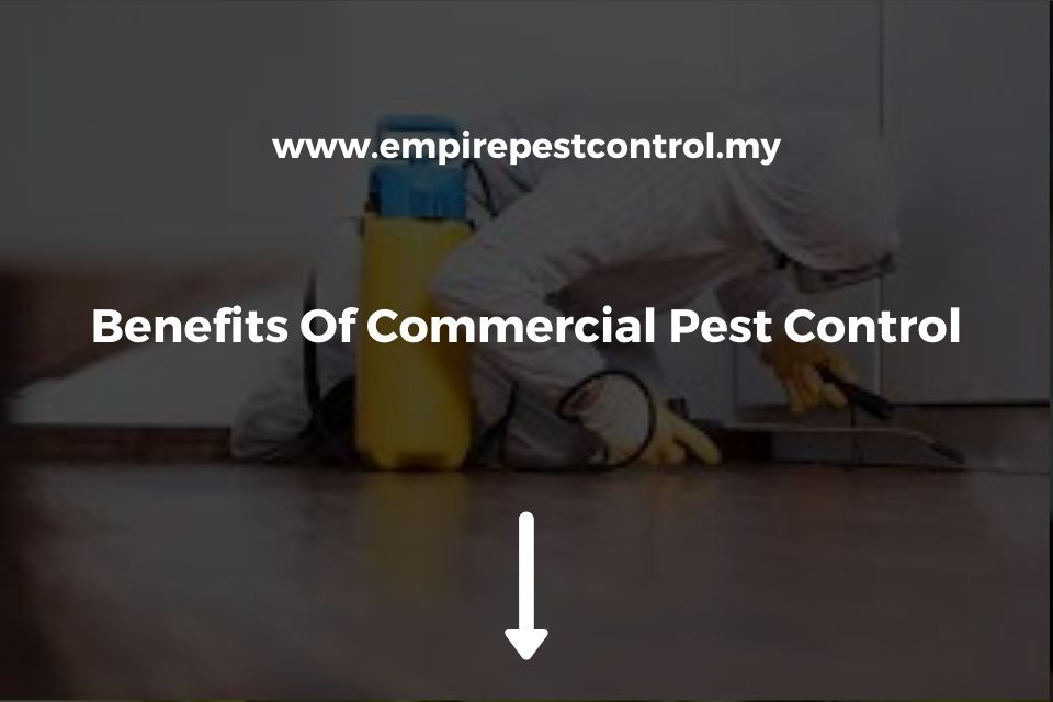 Benefits Of Commercial Pest Control