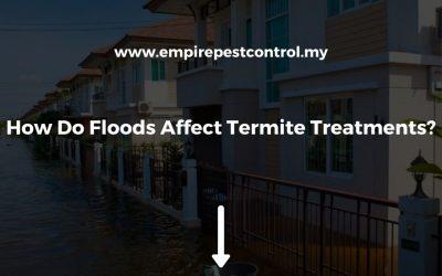 How Do Floods Affect Termite Treatments?