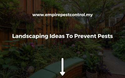 Landscaping Ideas To Prevent Pests