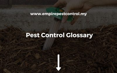 Pest Control Glossary