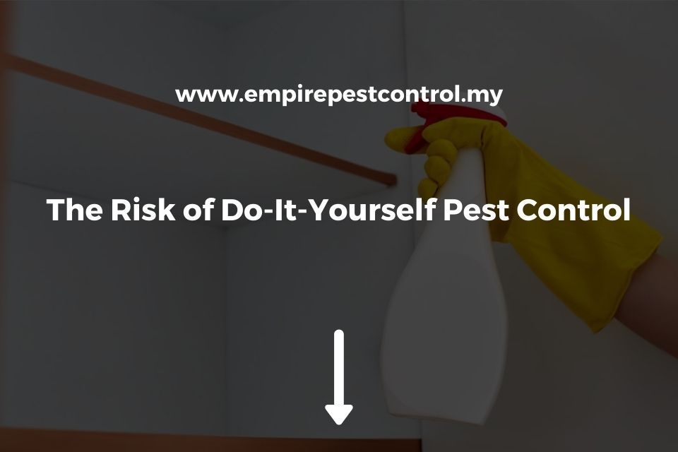 The Risk of Do-It-Yourself Pest Control