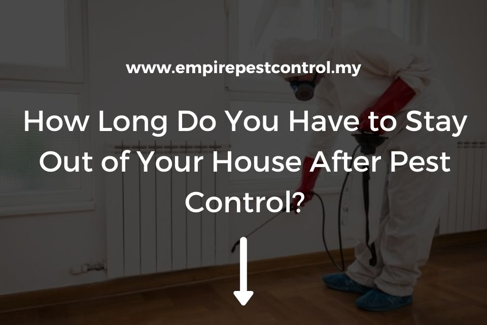 How Long Do You Have to Stay Out of Your House After Pest Control?