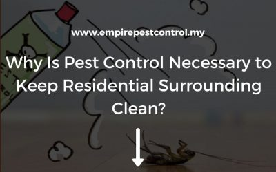 Why Is Pest Control Necessary to Keep Residential Surrounding Clean?