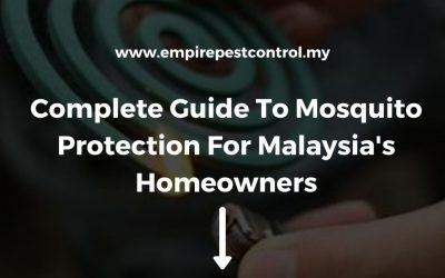 Complete Guide to Mosquito Protection For Malaysia's Homeowners