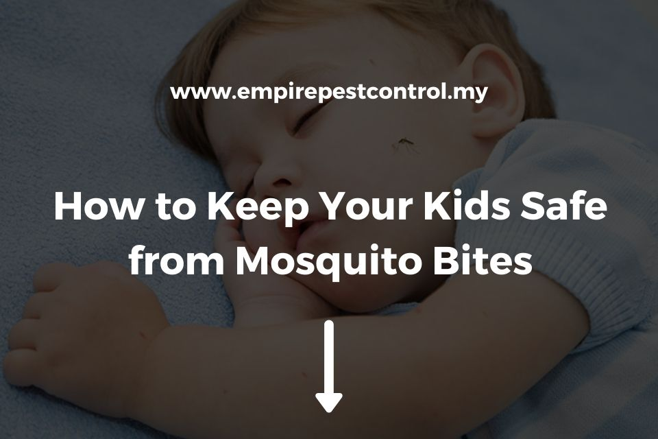How to Keep Your Kids Safe from Mosquito Bites