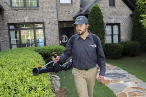 mosquito control experienced
