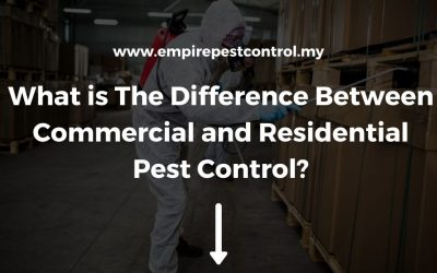 What is The Difference Between Commercial and Residential Pest Control?