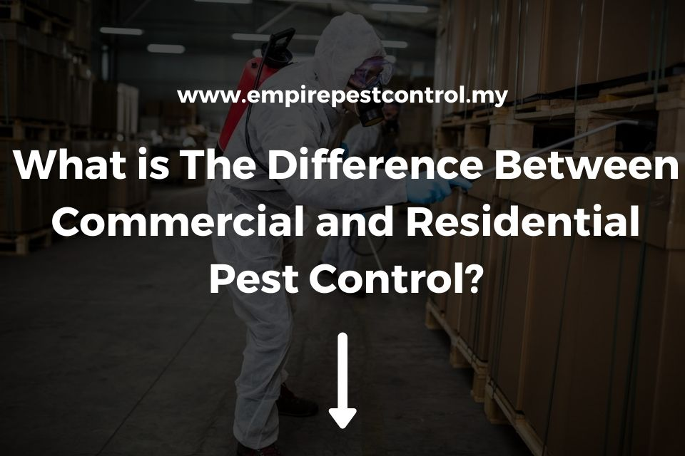 Difference Between Commercial and Residential Pest Control Featured Image