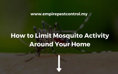 How to Limit Mosquito Activity Around Your Home