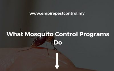 What Mosquito Control Programs Do