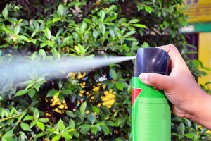 spraying mosquitoes